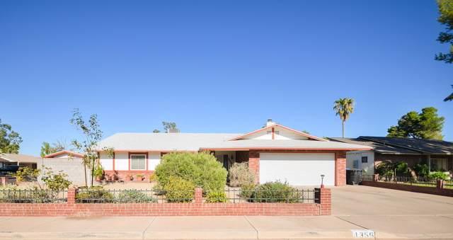 1356 S Glenview Circle, Mesa, AZ 85204 (MLS #5966171) :: Santizo Realty Group