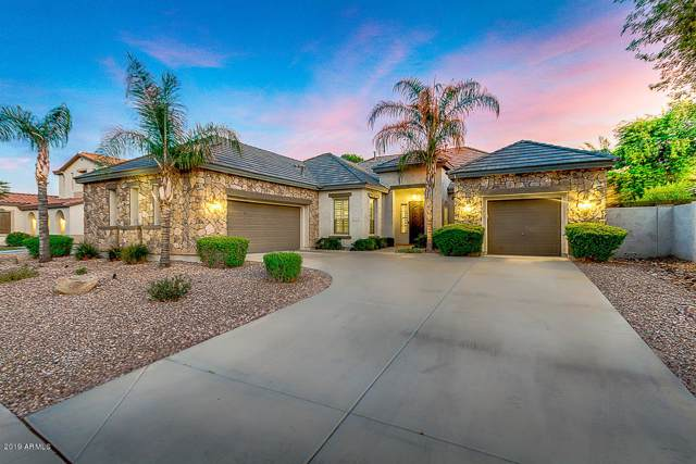 2327 E Glacier Place, Chandler, AZ 85249 (MLS #5966185) :: Revelation Real Estate