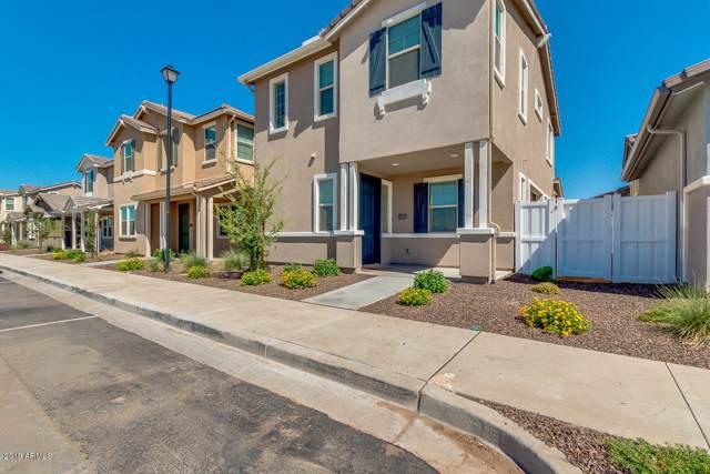 3805 E Stiles Lane, Gilbert, AZ 85295 (MLS #5966193) :: Lucido Agency