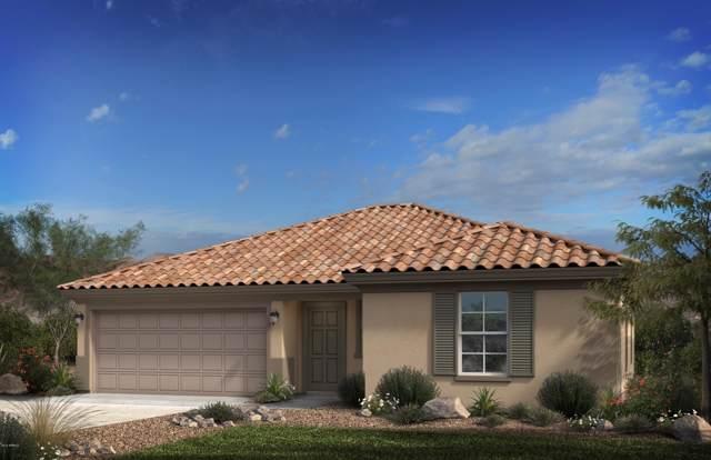 16239 W La Ventilla Way, Goodyear, AZ 85338 (MLS #5966232) :: Devor Real Estate Associates