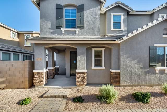 258 N Sandal, Mesa, AZ 85205 (MLS #5966274) :: Revelation Real Estate