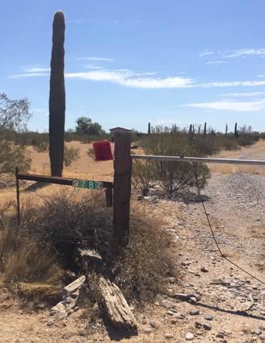 9787 N Sidewinder Circle, Florence, AZ 85132 (MLS #5966281) :: Arizona Home Group