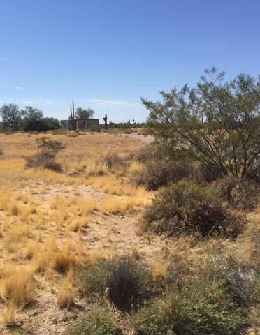 9775 N Sidewinder Circle, Florence, AZ 85132 (MLS #5966282) :: Riddle Realty Group - Keller Williams Arizona Realty