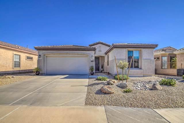 4431 E Ficus Way, Gilbert, AZ 85298 (MLS #5966312) :: Kepple Real Estate Group