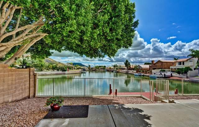 20263 N 53RD Drive, Glendale, AZ 85308 (MLS #5966417) :: Revelation Real Estate