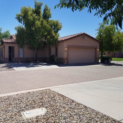 2597 E Indian Wells Place, Chandler, AZ 85249 (MLS #5966432) :: Revelation Real Estate