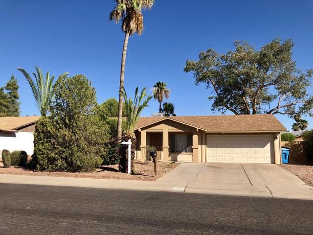 3407 E Anderson Drive, Phoenix, AZ 85032 (MLS #5966511) :: Yost Realty Group at RE/MAX Casa Grande