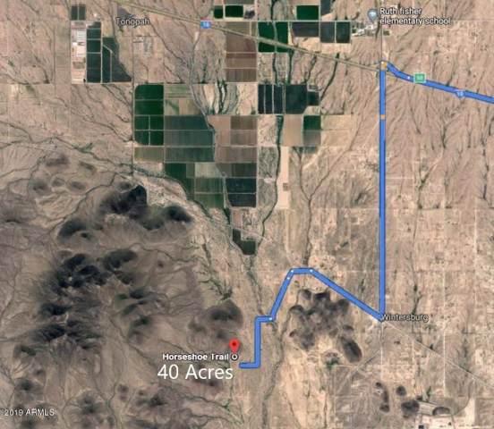 393XX W Horseshoe Trail, Tonopah, AZ 85354 (MLS #5966522) :: The W Group