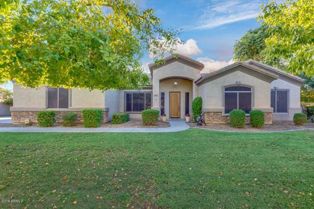20840 S Tiberius Drive, Queen Creek, AZ 85142 (MLS #5966527) :: Riddle Realty Group - Keller Williams Arizona Realty