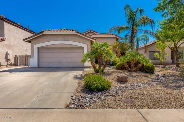 1663 S Maple, Mesa, AZ 85206 (MLS #5966550) :: Team Wilson Real Estate