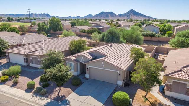 33112 N Cat Hills Avenue, Queen Creek, AZ 85142 (MLS #5966570) :: CC & Co. Real Estate Team