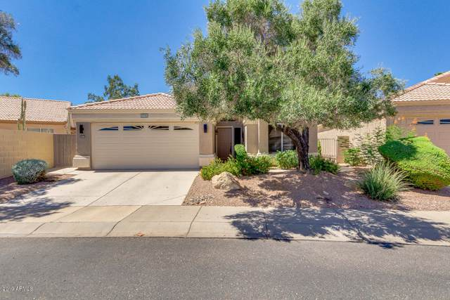 14036 W Pueblo Trail, Surprise, AZ 85374 (MLS #5966590) :: Openshaw Real Estate Group in partnership with The Jesse Herfel Real Estate Group