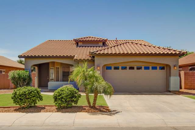 1183 E Jade Drive, Chandler, AZ 85286 (MLS #5966628) :: Revelation Real Estate