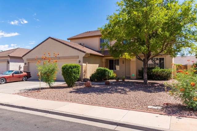7903 E Plata Avenue, Mesa, AZ 85212 (MLS #5966638) :: Openshaw Real Estate Group in partnership with The Jesse Herfel Real Estate Group