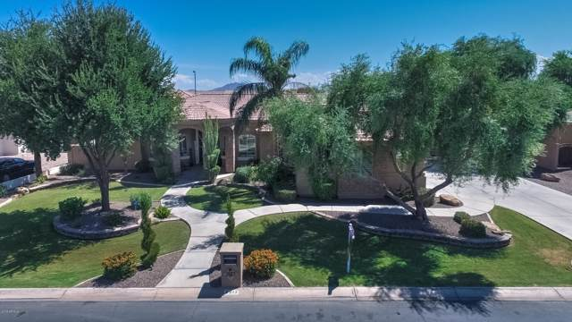 2913 E Portola Valley Drive, Gilbert, AZ 85297 (MLS #5966683) :: Arizona Home Group
