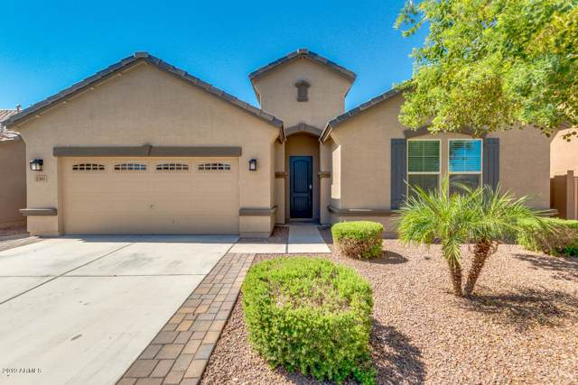 2301 W Windy Basin Court, Queen Creek, AZ 85142 (MLS #5966715) :: CC & Co. Real Estate Team