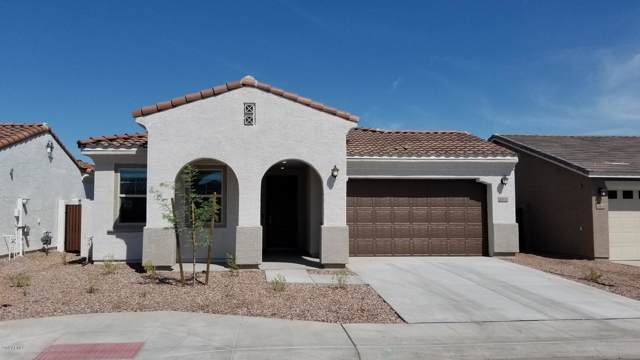 20835 N 40th Drive, Glendale, AZ 85308 (MLS #5966728) :: Santizo Realty Group