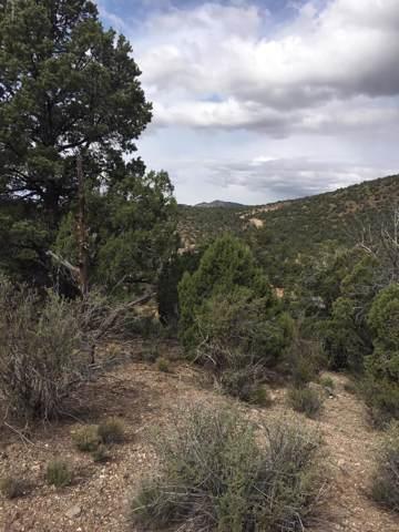 Lot 144 Eleka Trail, Kingman, AZ 86401 (MLS #5966782) :: Yost Realty Group at RE/MAX Casa Grande