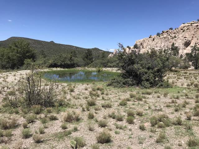 Lot 4 Knight Creek Road, Kingman, AZ 86401 (MLS #5966796) :: Klaus Team Real Estate Solutions