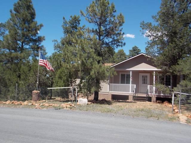 3371 Mogollon Drive, Overgaard, AZ 85933 (MLS #5966834) :: Team Wilson Real Estate