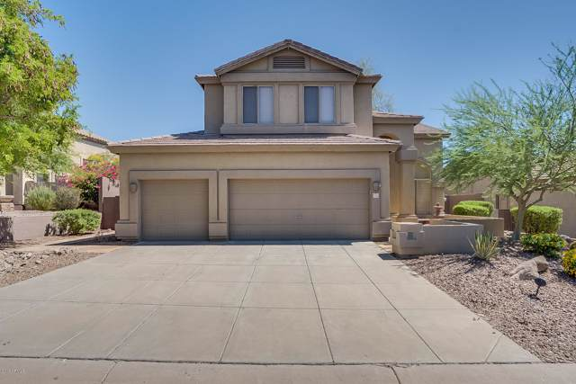 7263 E Tyndall Street, Mesa, AZ 85207 (MLS #5966839) :: Revelation Real Estate