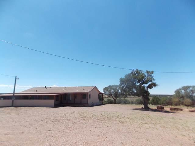 248 Cr 9151, Concho, AZ 85924 (MLS #5966840) :: Yost Realty Group at RE/MAX Casa Grande