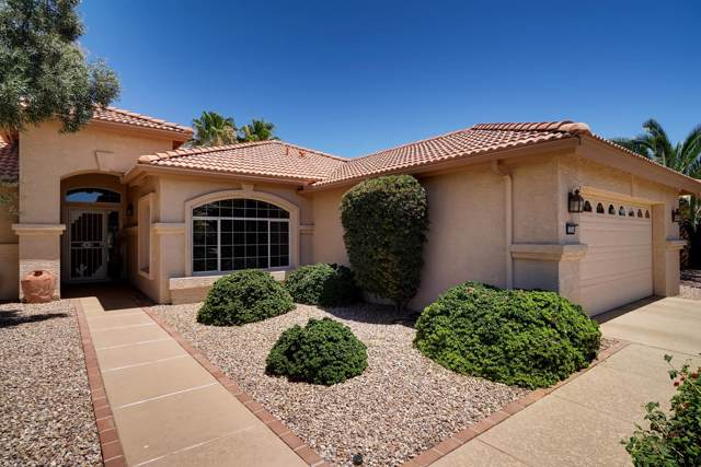 15554 W Piccadilly Road, Goodyear, AZ 85395 (MLS #5966869) :: Brett Tanner Home Selling Team