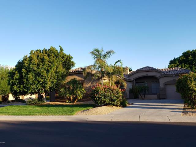 6867 W Cottontail Lane, Peoria, AZ 85383 (MLS #5966871) :: Kepple Real Estate Group