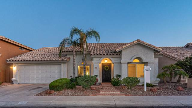 1257 E Briarwood Terrace, Phoenix, AZ 85048 (MLS #5966880) :: Power Realty Group Model Home Center