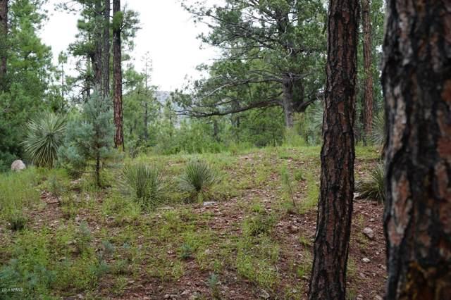 21B N Wild Oak Drive, Payson, AZ 85541 (MLS #5966933) :: Homehelper Consultants