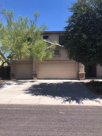 18538 W Cinnabar Avenue, Waddell, AZ 85355 (MLS #5967059) :: Conway Real Estate