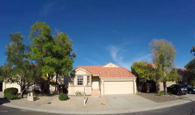 11927 N 113TH Street, Scottsdale, AZ 85259 (MLS #5967089) :: The Property Partners at eXp Realty