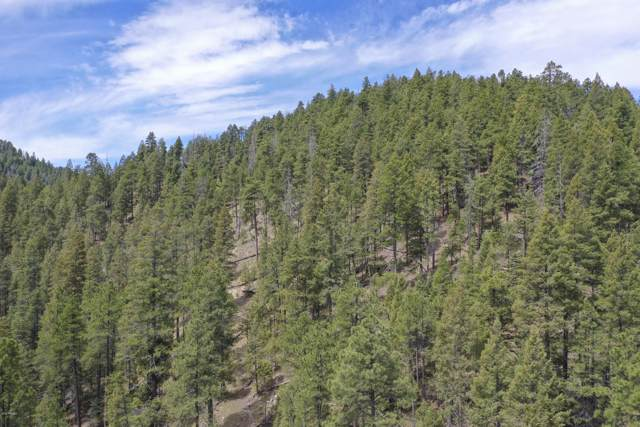 345 B Knapp Gulch Road, Walker, AZ 86301 (MLS #5967153) :: Kortright Group - West USA Realty