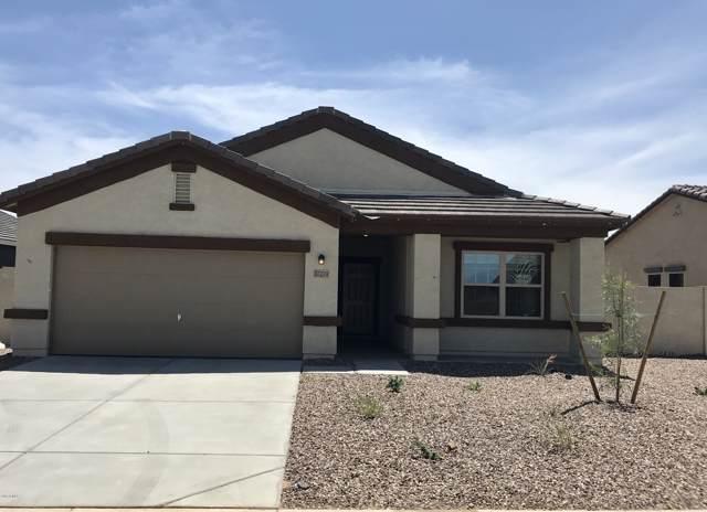 37279 W Capri Avenue, Maricopa, AZ 85138 (MLS #5967201) :: Power Realty Group Model Home Center