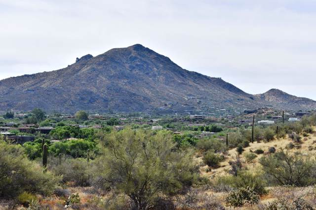 53XX E Ocotillo Road, Cave Creek, AZ 85331 (MLS #5967320) :: CC & Co. Real Estate Team