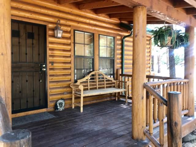 2639 Palomino Trail, Overgaard, AZ 85933 (MLS #5967333) :: The Pete Dijkstra Team