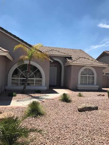 3816 N Kings Peak Street, Mesa, AZ 85215 (MLS #5967369) :: Occasio Realty