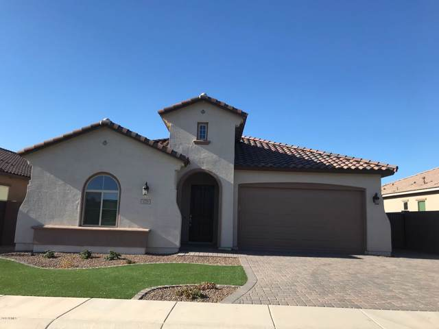 1178 W Whistling Thorn Avenue, Queen Creek, AZ 85140 (MLS #5967512) :: The Laughton Team