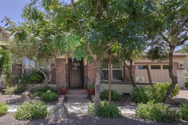 3423 E Megan Street, Gilbert, AZ 85295 (MLS #5967862) :: The Helping Hands Team
