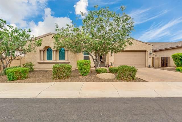 1050 E Clifton Avenue, Gilbert, AZ 85295 (MLS #5967908) :: CC & Co. Real Estate Team