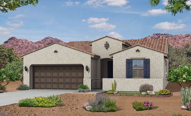 7537 S Woodchute Drive, Gold Canyon, AZ 85118 (MLS #5967968) :: Cindy & Co at My Home Group