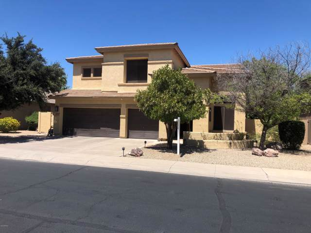 944 E Aquarius Place, Chandler, AZ 85249 (MLS #5968103) :: Arizona 1 Real Estate Team