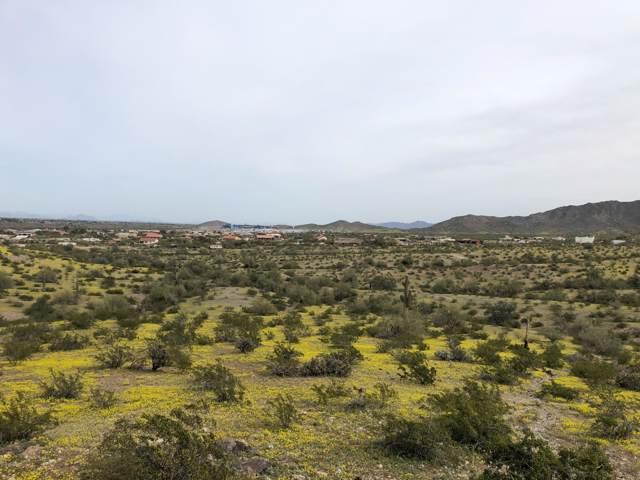 8946 S 141st Avenue, Goodyear, AZ 85338 (MLS #5968144) :: Lucido Agency