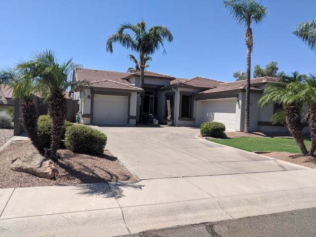 3307 E Maplewood Street, Gilbert, AZ 85297 (MLS #5968156) :: CC & Co. Real Estate Team