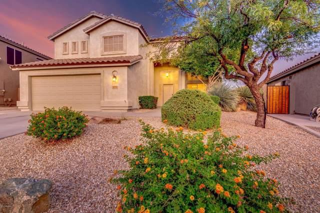 16009 S 18TH Drive, Phoenix, AZ 85045 (MLS #5968172) :: RE/MAX Excalibur