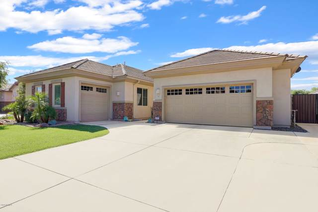737 E Sipapu Drive, Gilbert, AZ 85297 (MLS #5968204) :: CC & Co. Real Estate Team