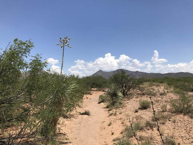 Lot 193 Coronado Development, Douglas, AZ 85607 (MLS #5968246) :: Nate Martinez Team