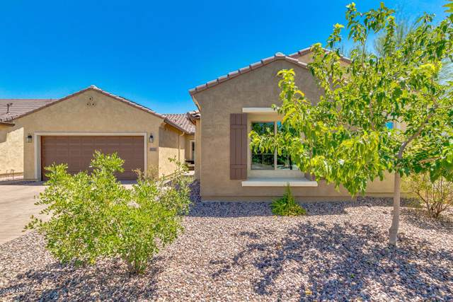 6651 W Desert Blossom Way, Florence, AZ 85132 (MLS #5968395) :: The Pete Dijkstra Team