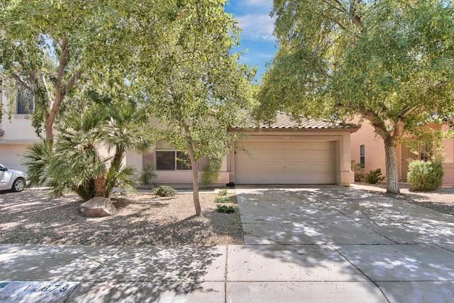 12879 W Windsor Avenue, Avondale, AZ 85392 (MLS #5968459) :: The Daniel Montez Real Estate Group