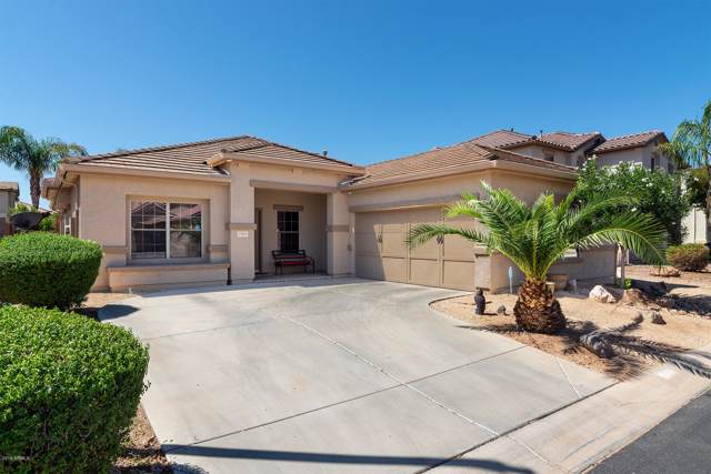 3765 E Constitution Court, Gilbert, AZ 85296 (MLS #5968529) :: My Home Group